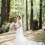 Novella Bridal Wedding Dress Cleaning Angel